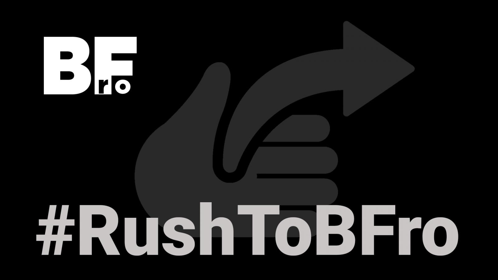 Rush to BF.ro